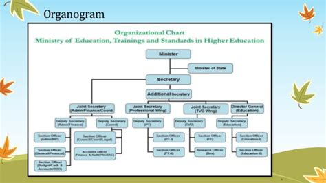 ministry of federal education and professional
