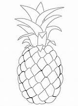 Pineapple Coloring Nature Fruits sketch template