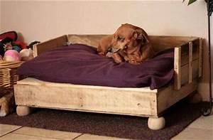 camas para perros recicladas por ti With bed frame with dog kennel