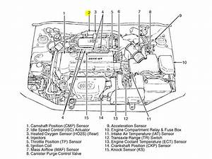 Hyundai Xg300 Fuse Box Diagram  Hyundai  Free Engine Image