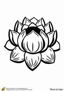 Dessin Fleurs De Lotus : coloriage fleur de lotus symmetrique sur ~ Dode.kayakingforconservation.com Idées de Décoration