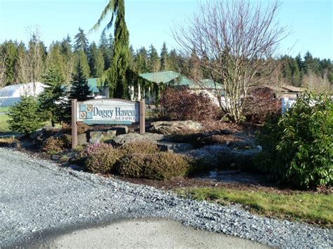 doggy haven resort   bothell washington wa