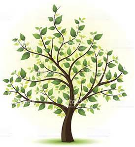 Green Tree Illustration