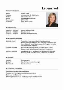 Curriculum vitae resume template sample german austria for German cv template doc