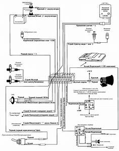 clifford arrow ii With clifford alarm wiring diagrams english