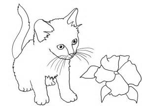 Cats and Kittens Coloring Pages