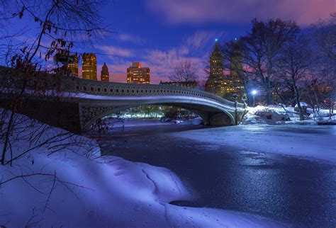 Central Park Winter Iphone Wallpaper by Winter In Central Park Hd Wallpaper Background