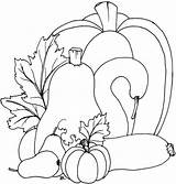 Coloring Fall Pumpkins Pumpkin Printable Pages Beccy Gourd Patterns Place Gourds Templates Template Sheet Embroidery Applique Leaves Beccysplace Sheets Stamps sketch template