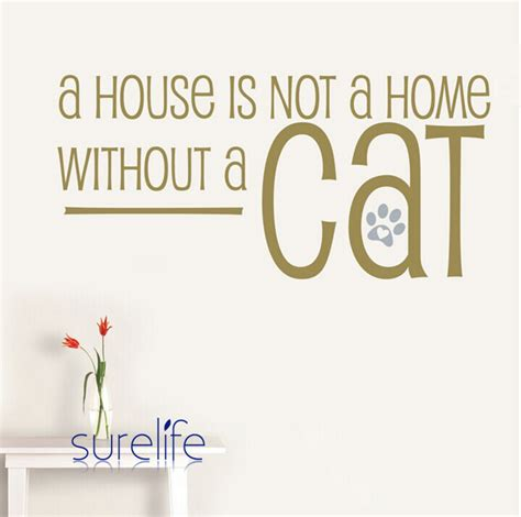 photo collection text cats quotes grayscale