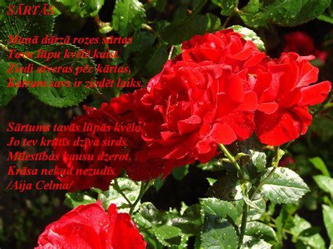 Aijassmaids - dzeja katrai gaumei...: SĀRTĀS