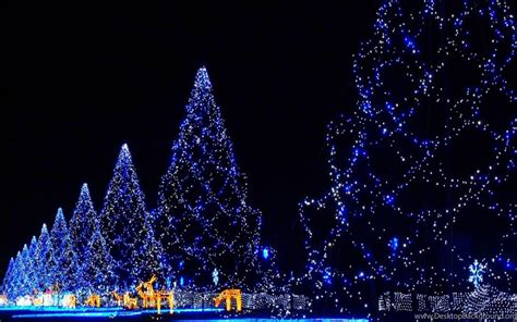 merry christmas wallpapers for whatsapp desktop background