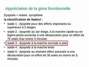 Emphysémateuse : définition de EMPHYSÉMATEUX, EUSE , adj. et subst.