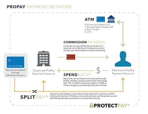 custom enterprise global payment processing solutions propay