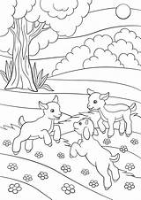 Goat Coloring Farm Printable Getcolorings Getdrawings sketch template