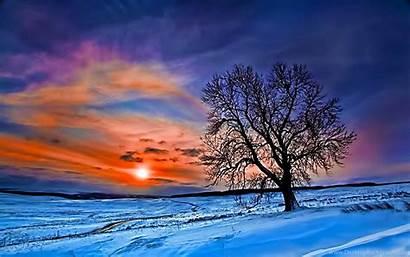 Desktop Winter Widescreen Forest Wallpapers Background Uncalke