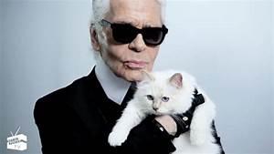 Choupette Chat Karl : karl lagerfeld 39 s cat choupette stars in net a porter fashion promo hollywood reporter ~ Medecine-chirurgie-esthetiques.com Avis de Voitures