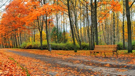 Wallpaper Beautiful autumn park, trees, leaves, bench ...