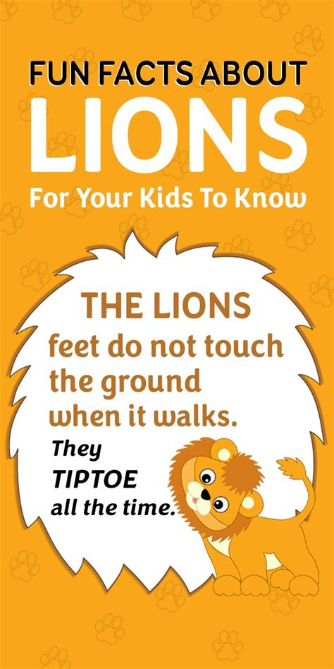Fun Facts And Interesting Information About Lions For Kids