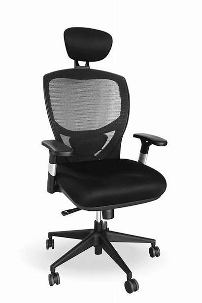 Chair Ergonomic Falcon Chairs Office Mastro Rest