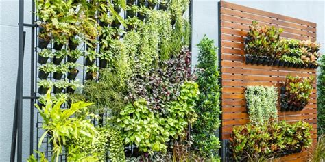 home design hacks green walls and vertical gardens lifestyle home