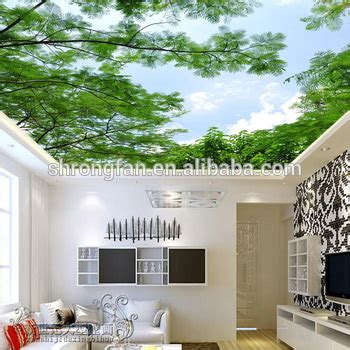 ceiling decorative beautiful wall paper  ceiling