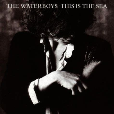 this is for the cover the waterboys this is the sea want album covers