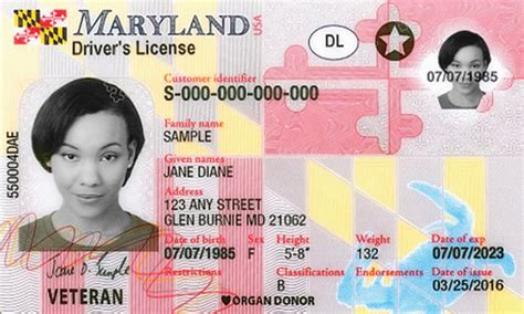 Maryland New Driver's License Application And Renewal 2019