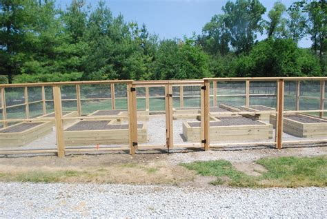 Garden Fence by Vegetable Garden Fence Gate 15 Methods To Make Your