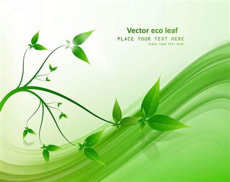 diseño flyer verde circulo template vector abstracto natural eco vida verde onda brillante