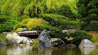 Bridge Forest River Rate