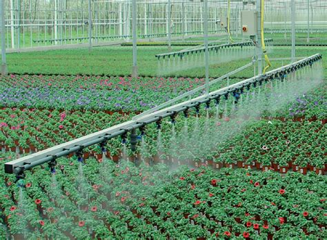 Serre Trees Pdf by High Technology Watering Boom For Greenhouse Dubois