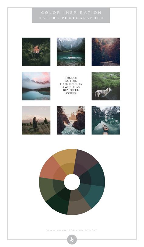 Color Palette Inspiration by Industry: Photography (With