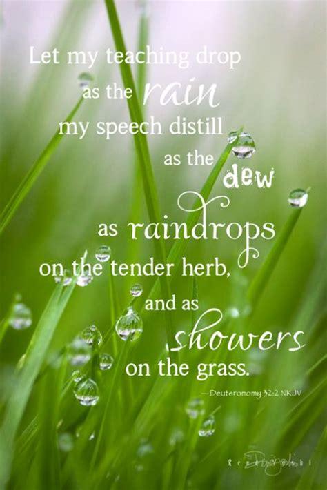 img raindropsgrassdtsmw life   rain