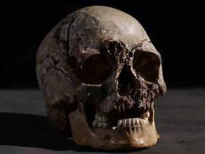 Dna Analysis Reveals Britain U0026 39 S Oldest Known Modern Man Had