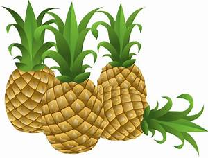 Free to Use & Public Domain Pineapple Clip Art