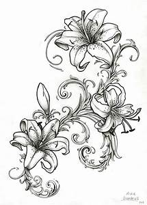 Stargazer Lily Drawing Outline | Bouquet Idea