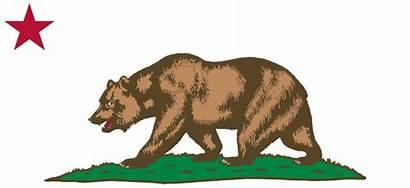 Svg Bear Flag California Kodiak Star Clipart