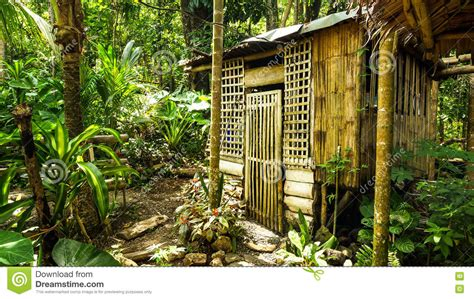 native house   philippines stock image image  bamboo green