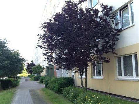 Garten Kaufen Rostock Lütten Klein by Sassnitzer Str 8 L 252 Tten Klein In Rostock