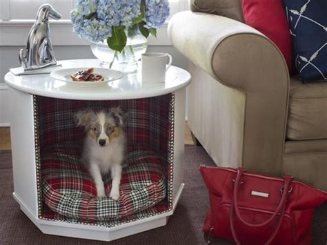 stylish dog crates home stories