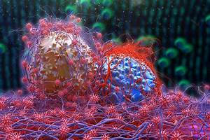 Cancer, Breakthrough, Virus, Could, Unmask, Tumors, And, Prevent, Disease, From, Returning