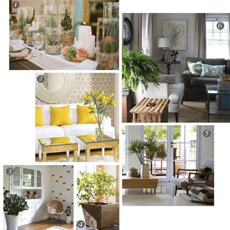 indoor plant decorating ideas indoor plant decoration