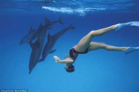dancing  dolphins stunning underwater photographs