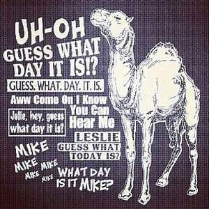 Funny Wednesday   Days of the Week   Pinterest   Wednesday ...