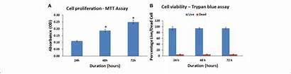 Cell Assay Trypan Viability Mtt Activity Mitochondrial