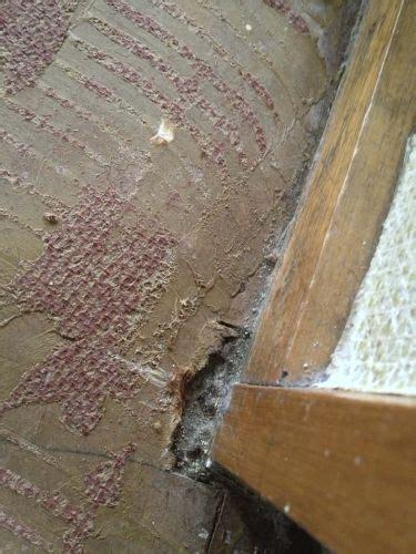 Vloerzeil Met Asbest by Is Dit Asbest Op De Vloer