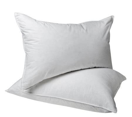 northern nights pillows northern nights 550 fp downaround pillow softsupport