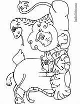 Coloring Pages Animals Grassland African Five Popular sketch template