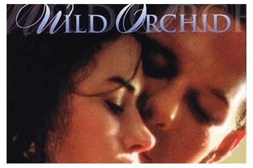 bollywood músicas românticas 2011 baixar gratuitos
