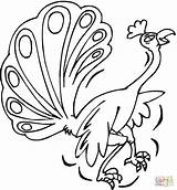 Coloring Peacock Pages Printable Peacocks Drawing Clipart Supercoloring Paper Categories sketch template